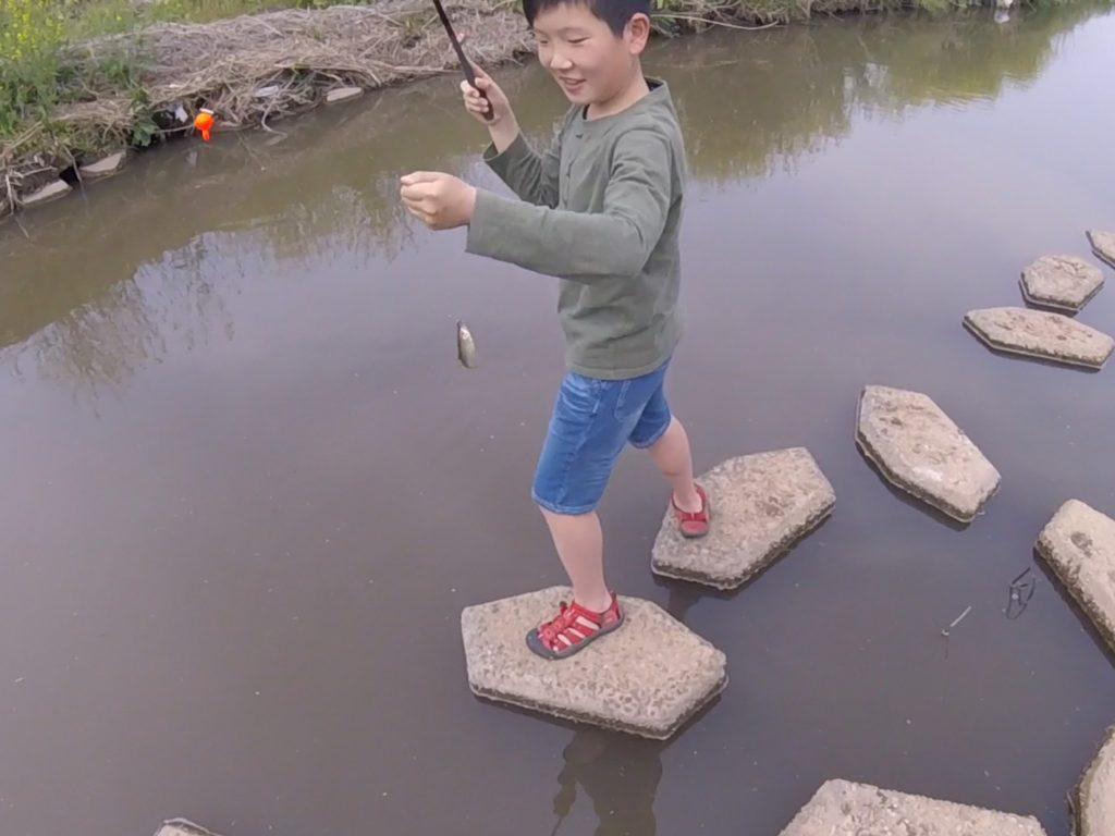 カワムツ釣り